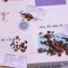 Archäologie erleben - Mission Eiszeit