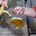 Bilder zur Sendung: Bier - Vom Hopfen bis zur Schaumkrone