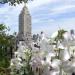 Bilder zur Sendung: Die Gärten von New York