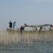 Induswelten