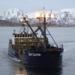 Bilder zur Sendung: Fang des Lebens - Der gef�hrlichste Job Alaskas