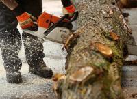 Bilder zur Sendung: STIHL Timbersports