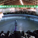 Milliardenschwer - Das System Milch