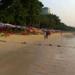 Bilder zur Sendung: Oh, mein Pattaya! Im Tollhaus von Thailand