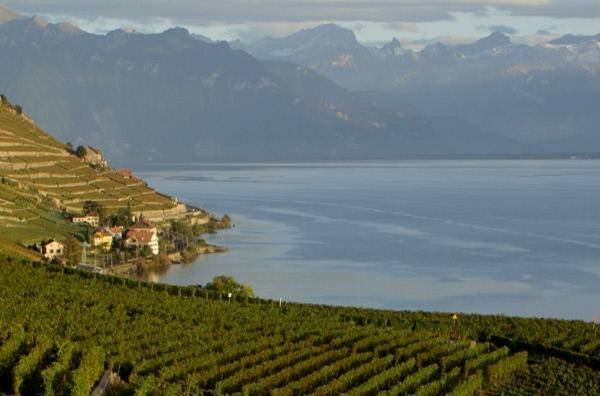 Bild 1 von 4: Am Fuße der Schweizer Alpen öffnet der Genfer See den Blick auf atemberaubende Landschaften. An diesem idyllischen Fleckchen Erde drehte der französische Regisseur Claude Chabrol den Film \