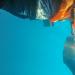 Das Purpurmeer