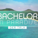Bachelor in Paradise - Der Talk