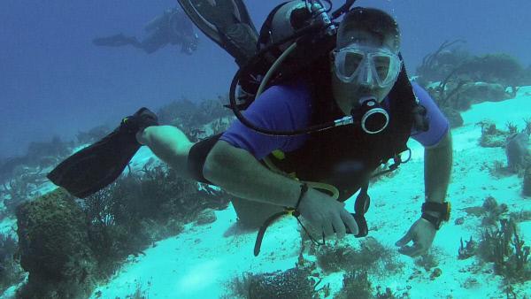 Bild 1 von 1: Als ein Hobbytaucher in knapp 15 Meter Tiefe an einer Felswand entlang schwimmt, wird er plötzlich von einem Sog weitere 15 Meter nach unten gezogen. Ab einer solchen Strecke unter der Meeresoberfläche droht ein sogenannter Tiefenrausch.