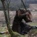 Bilder zur Sendung: Krieger der Vergangenheit: Braveheart