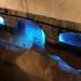 Abwasser - Von der Giftbrühe zur Goldgrube