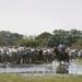 Bilder zur Sendung: Cowboytreck mit nassen Füßen