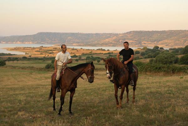 Bild 1 von 3: Schon früh am Morgen trainieren der erste Fahnenträger Su Bellu (re.) und sein Gehilfe Costanzo (li.) mit ihren Pferden für die Ardia