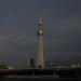 Strip the City - Tokio