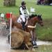 Bilder zur Sendung: Pferdesport