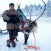 Unter Rentieren - Überleben am Polarkreis