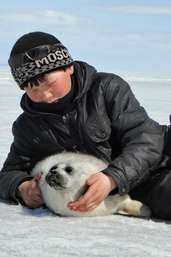 Bild 1 von 4: Im Frühjahr hilft Boris verirrten Robbenbabys dabei, zu ihren Tauchlöchern im Baikalsee zurückzufinden.