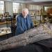 David Attenborough - Auf den Spuren des Seedrachen