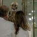 Tim und Struppi und der Fluch der Mumie
