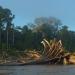 Der Wert der Artenvielfalt - Peru