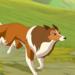 Bilder zur Sendung: Lassie