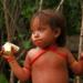 Bilder zur Sendung: Kulinarische Reise durch Brasilien