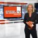 Arabische Clans - Spiegel TV Spezial