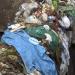 Das Geschäft mit dem Plastik