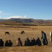 Die stolzen Reiter von Lesotho