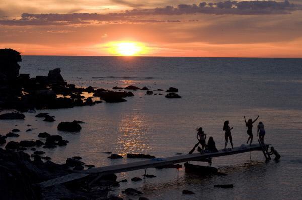 Maria Wern, Kripo Gotland - Die Insel der Puppen