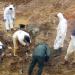 Der Schlächter von Bosnien - Der Mladic-Prozess