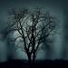 Bilder zur Sendung: Die Geisterflüsterer - Zu Gast in der paranormalen Welt