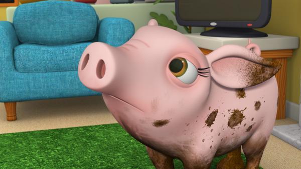 Bild 1 von 4: Schweinchen Margot traut sich nicht auf die Party, weil es so dreckig ist.