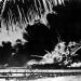 Bilder zur Sendung: Der Pazifikkrieg - Pearl Harbor