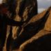 Bilder zur Sendung: Das verborgene Volk - Islands Sagen- und Mythenwelt