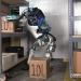 Künstliche Intelligenz - Die digitale Revolution