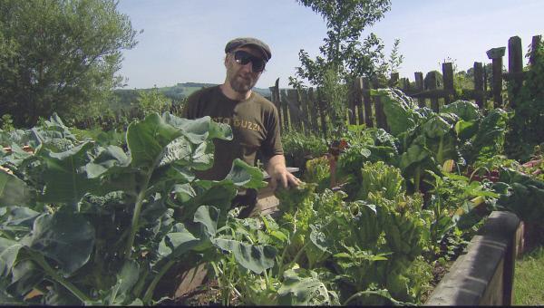 Bild 1 von 8: Roland Düringer in seinem Gemüsegarten.