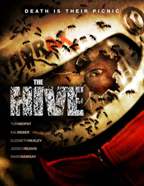 Bild 1 von 6: Killerameisen Cover