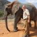 Achtung, Wilderer! Kampf gegen Elfenbein-Jäger
