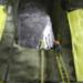 Bilder zur Sendung: Nervenkitzel im Tunnel