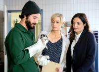 Tierärztin Dr. Mertens VI. Staffel, Folge 72