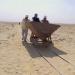 Ägyptens Totenstadt - Die Geheimnisse von Sakkara