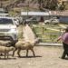 Land Rover Experience Tour 2017 - Abenteuer Peru