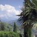 Sonniges Südtirol - Wo der Süden beginnt