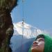Honigjäger im Himalaja