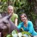 Bilder zur Sendung: Anna und die wilden Tiere