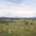 Abenteuer Kenia