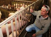 Vom Dreckschwein zur Wiesensau