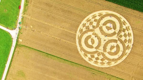 Bild 1 von 1: Ein 75 Meter großer Kornkreis direkt neben der Erdfunkstelle Raisting am Ammersee zog 2014 Fans aus aller Welt an. Wir haben die Science-Fiction-artigen Muster - und ihre Besucher - aus der angemessensten Perspektive gedreht: aus der Luft.