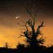 Kometen - Boten aus dem All