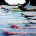 Bilder zur Sendung: Ski: FIS Weltcup Abfahrtstraining der Herren Kitzbühel